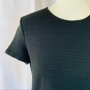ANN TAYLOR Textured Short Sleeve Career Top